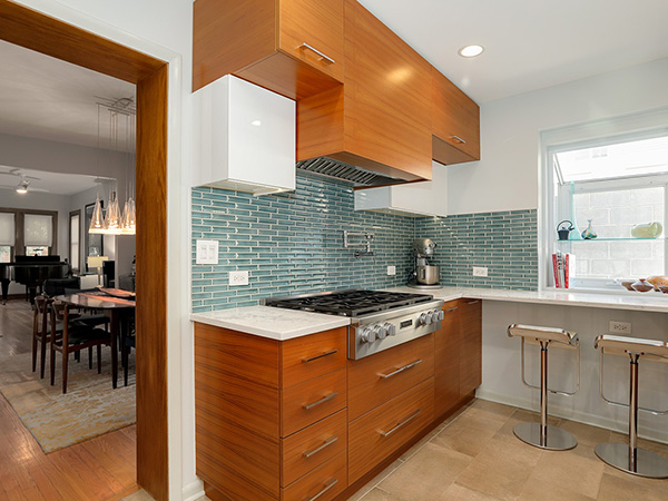 WICKER PARK RENOVATION